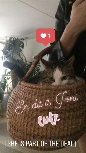 Kat van Mira