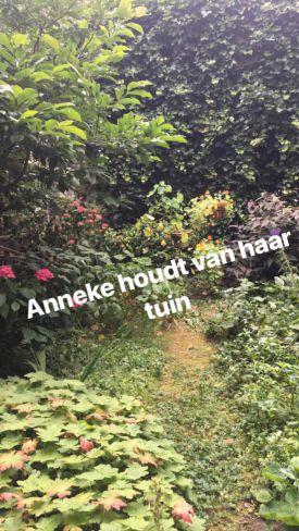 de tuin van Anneke